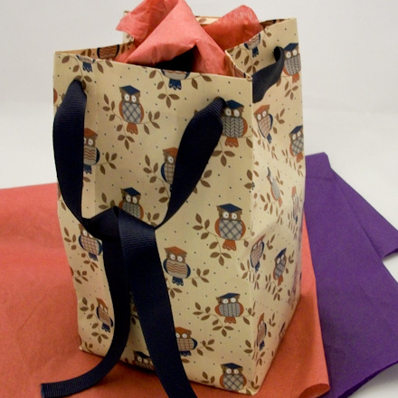 Gift Bag With Ribbon Tie