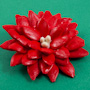 Pumpkin Seed Poinsettias - brooch or ornament